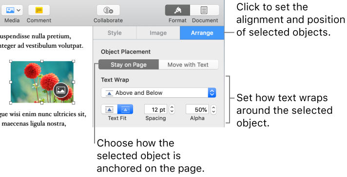 how to hide text on mac document